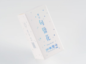 洲南鹽場|旬鹽花 Fleur De Sel of the 24 solar terms